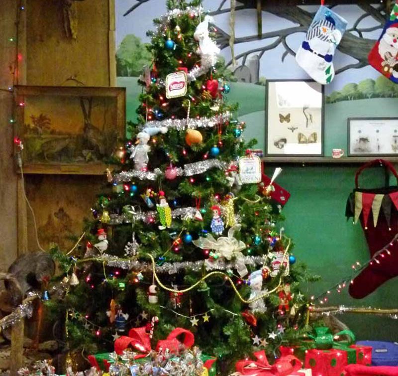 Nature Center Christmas Tree