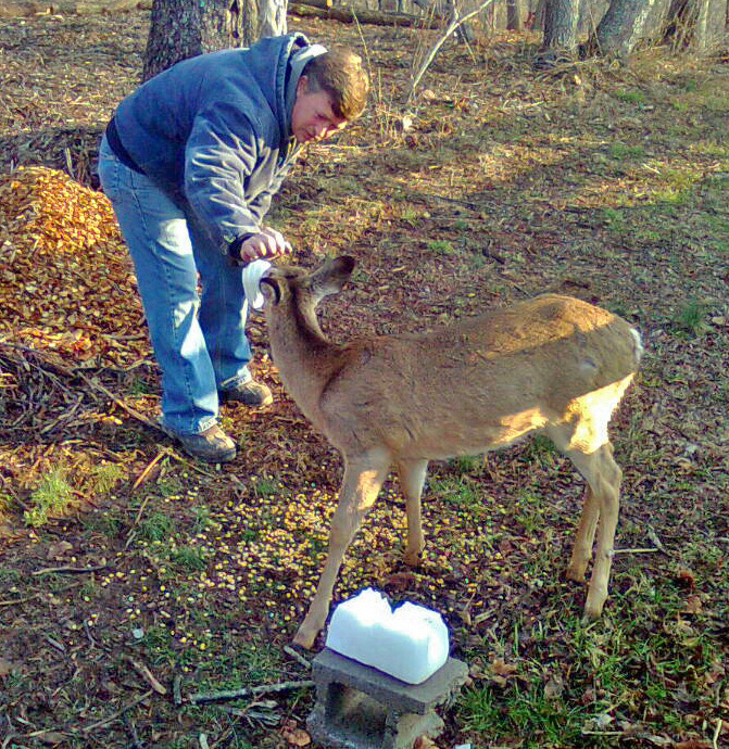 Deer lick nature preserve — pic 9